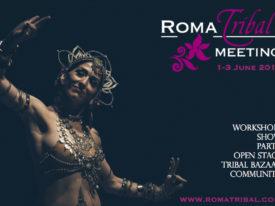 Roma Tribal Meeting 2018